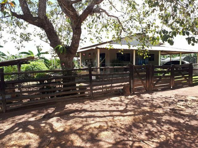 Fazenda de 462 Ha , 300 Ha Lavoura . Redenção - PA .permuta 70% em Fazenda no Paraná - Foto 15
