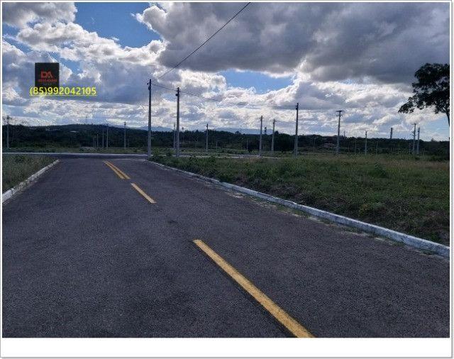 Terras Horizonte// - Foto 17