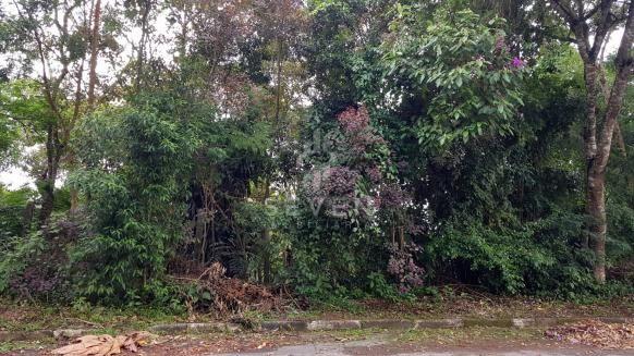 Terreno à venda em Jardim sao jorge, Arujá cod:254