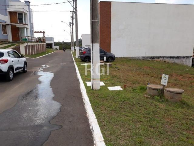 Terreno à venda em Morro santana, Porto alegre cod:MF22185 - Foto 9