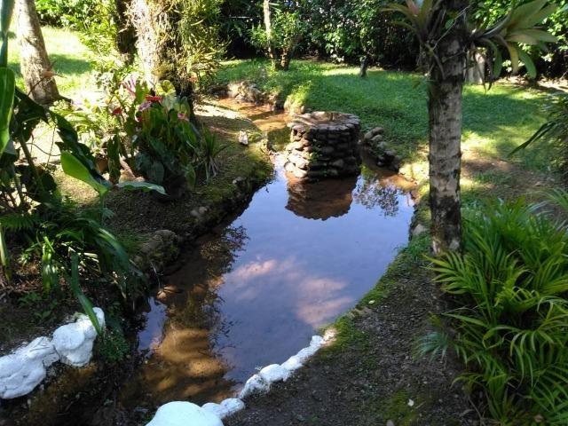 Chácara - São João da Graciosa - Morretes - Foto 3