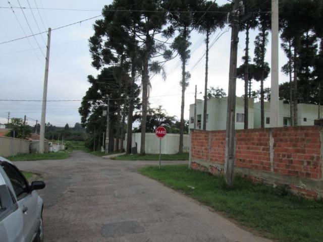 Terreno à venda, 420 m² por r$ 160.000 - rio pequeno - são josé dos pinhais/pr - Foto 4