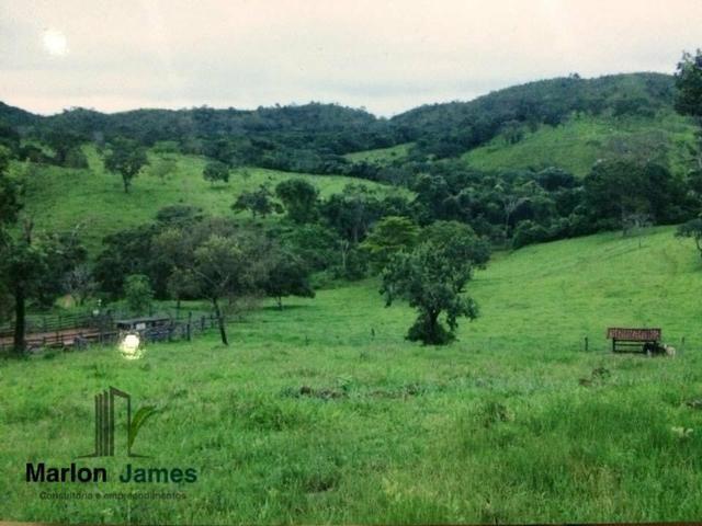 Fazenda em Santa Cruz de Goiás! - Foto 4