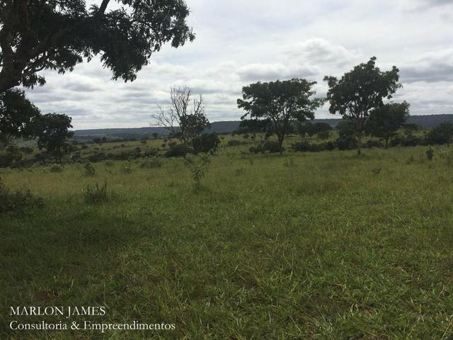 Fazenda no Município de Ipameri-Go - Foto 9