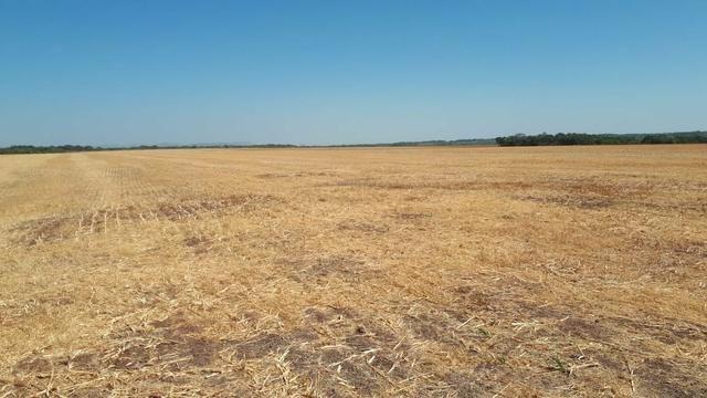 Fazenda de 462 Ha , 300 Ha Lavoura . Redenção - PA .permuta 70% em Fazenda no Paraná - Foto 12