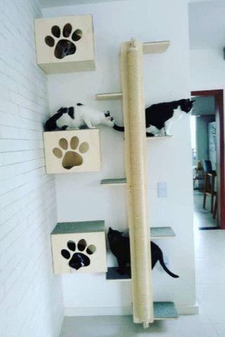 Playground para gatos - Foto 2