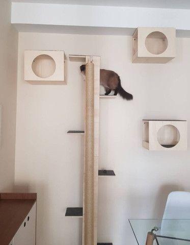 Playground para gatos - Foto 3