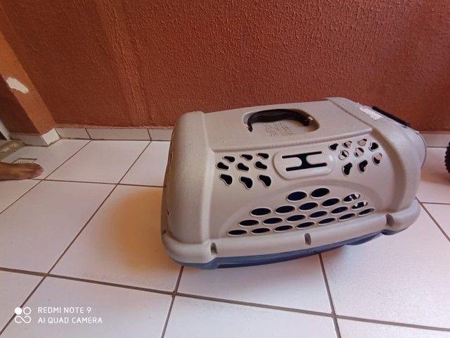 Caixa de Transporte tamanho 3 Panther Pop Plast Pet Azul para Cães e Gatos - Foto 5