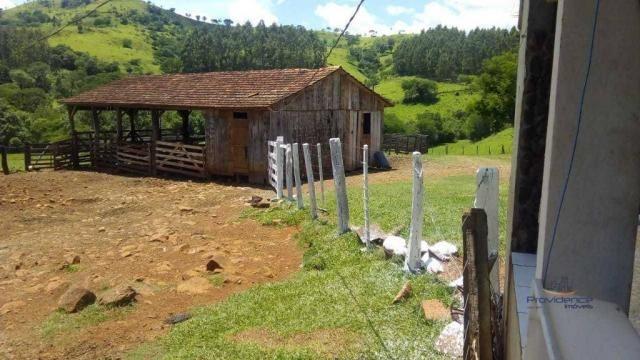 Fazenda à venda, 2541000 m² por r$ 3.675.000 - fazenda velha - nova laranjeiras/pr - Foto 7