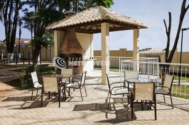 Apartamento à venda com 3 dormitórios em Cinquentenário, Belo horizonte cod:593834 - Foto 7