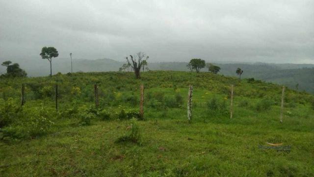 Fazenda à venda, 2541000 m² por r$ 3.675.000 - fazenda velha - nova laranjeiras/pr - Foto 4