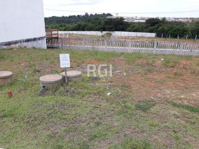 Terreno à venda em Morro santana, Porto alegre cod:MF22185 - Foto 7