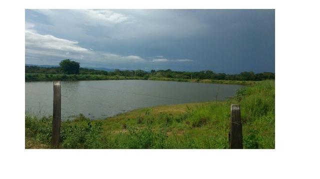 250000 m2 Lãmina D'agua, fazenda 1950 hectares Poconé - Foto 3