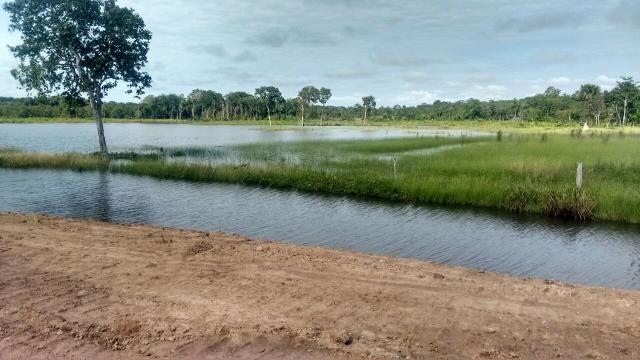 Fazenda de 462 Ha , 300 Ha Lavoura . Redenção - PA .permuta 70% em Fazenda no Paraná - Foto 16
