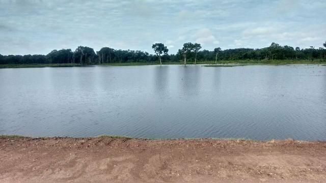 Fazenda de 462 Ha , 300 Ha Lavoura . Redenção - PA .permuta 70% em Fazenda no Paraná - Foto 18