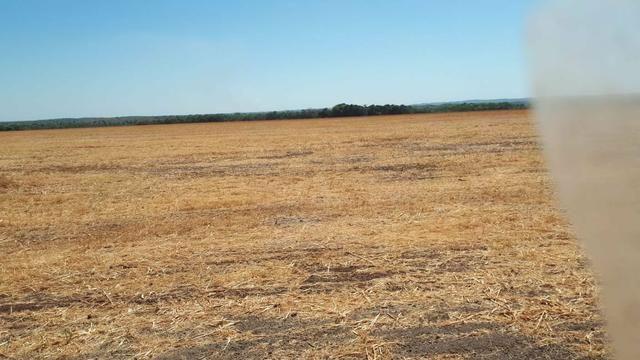 Fazenda de 462 Ha , 300 Ha Lavoura . Redenção - PA .permuta 70% em Fazenda no Paraná - Foto 11