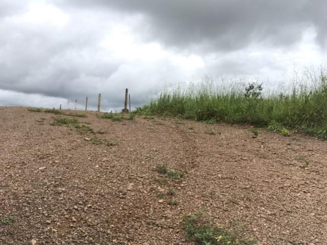 Terrenos de 1.000m2 por apenas 399,00 a parcela - Foto 11