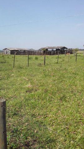 Fazenda em amambaí - Foto 3