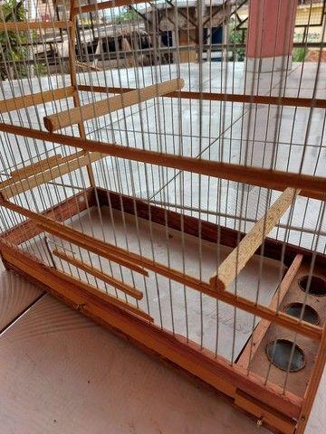 gaiola de passarinho  - Foto 3