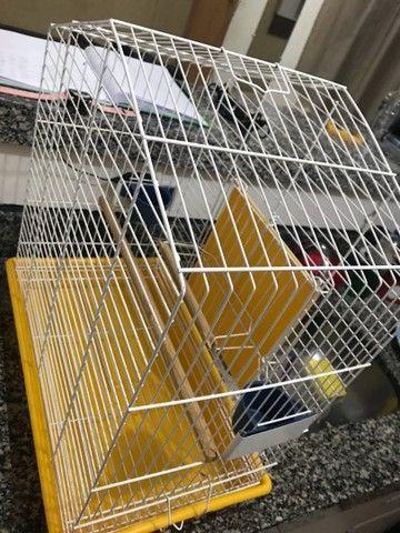 Gaiola para pássaros  - Foto 3