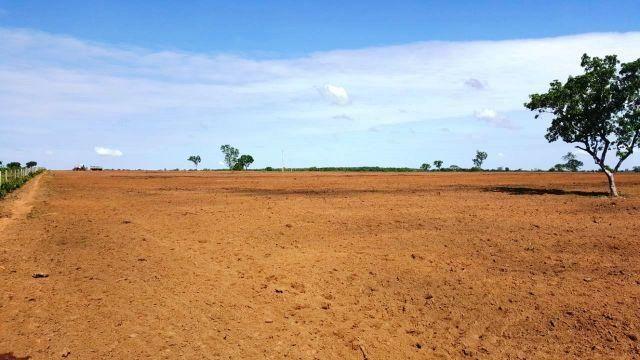 Fazenda p/ Arrendamento 1000 ha - Rio Sono TO