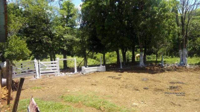 Fazenda à venda, 2541000 m² por r$ 3.675.000 - fazenda velha - nova laranjeiras/pr - Foto 10
