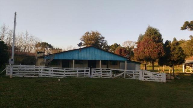 Sítio rural à venda, zona rural, quitandinha. - Foto 14