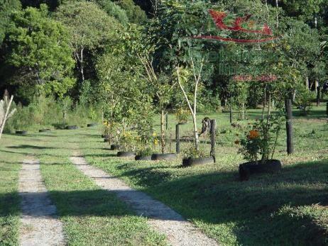 Chácara rural à venda, campo largo da roseira, são josé dos pinhais - ch0026. - Foto 14