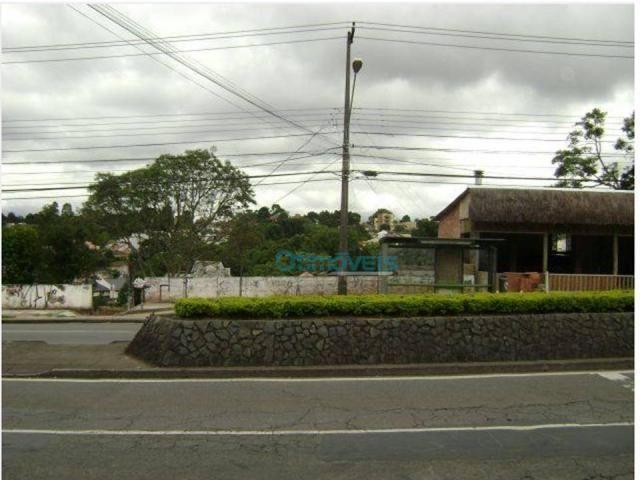 Terreno comercial na avenida manoel ribas - Foto 2