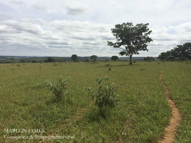 Fazenda no Município de Ipameri-Go - Foto 10