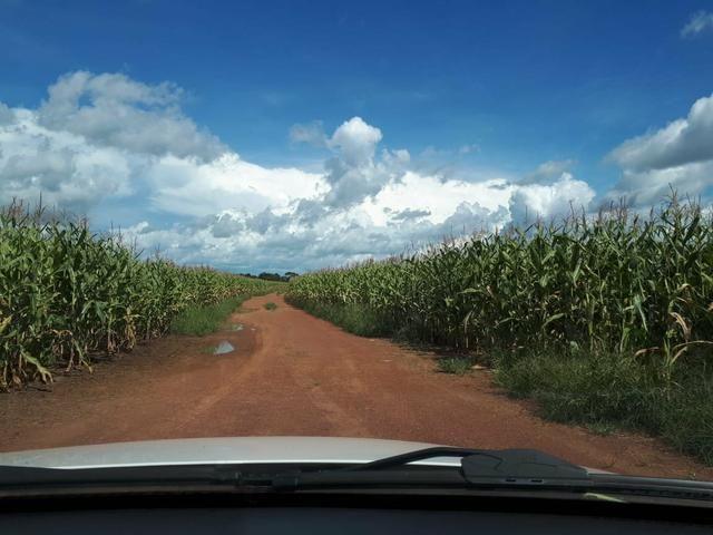 Fazenda de 462 Ha , 300 Ha Lavoura . Redenção - PA .permuta 70% em Fazenda no Paraná - Foto 20