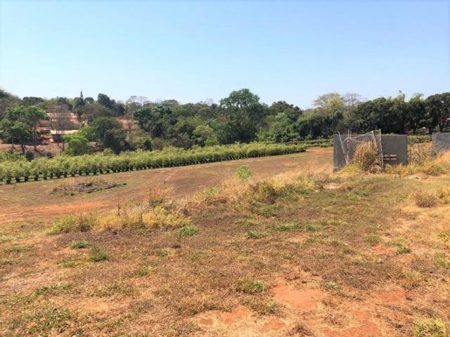 Vende-se Área em Goianira - Foto 2