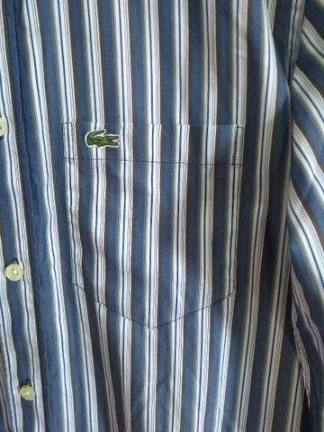 Camisa lacosta original