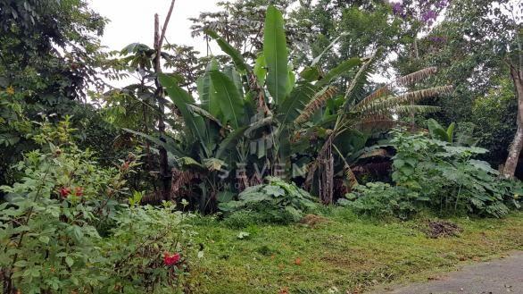 Terreno à venda em Jardim sao jorge, Arujá cod:254 - Foto 5