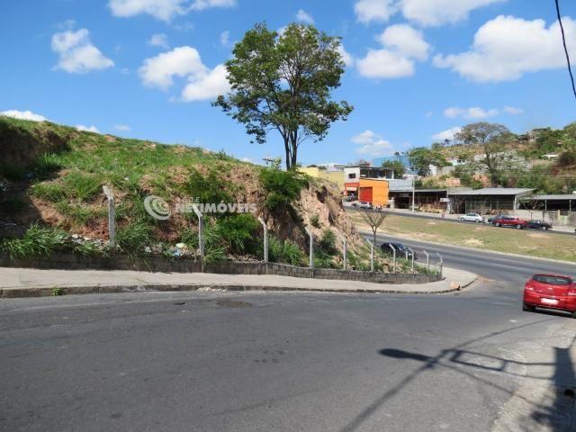 Terreno à venda em Jardim alvorada, Belo horizonte cod:647864 - Foto 2