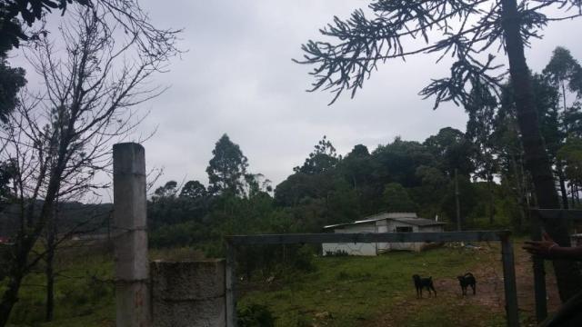Área à venda, 103000 m² por r$ 700.000,00 - borda do campo - são josé dos pinhais/pr - Foto 19