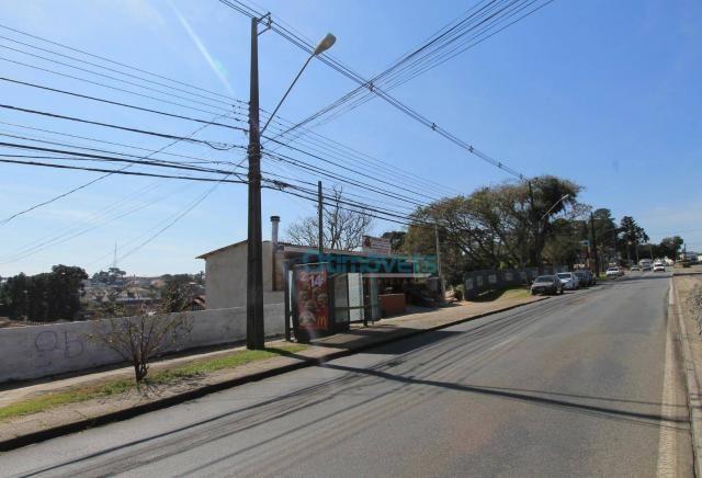 Terreno comercial na avenida manoel ribas - Foto 6