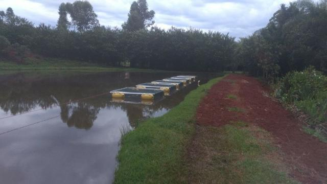 Tanque rede - piscicultura - usado - Foto 5