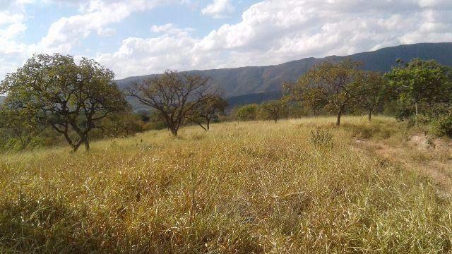 Fazenda 63 ha onça de pitangui - Foto 4
