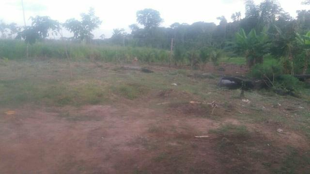 Terra 1 hectare (troca)