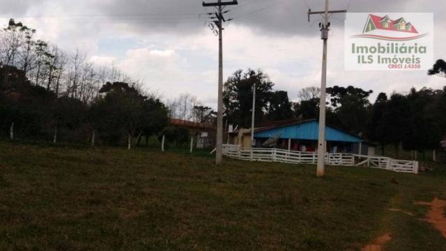 Sítio rural à venda, zona rural, quitandinha. - Foto 15
