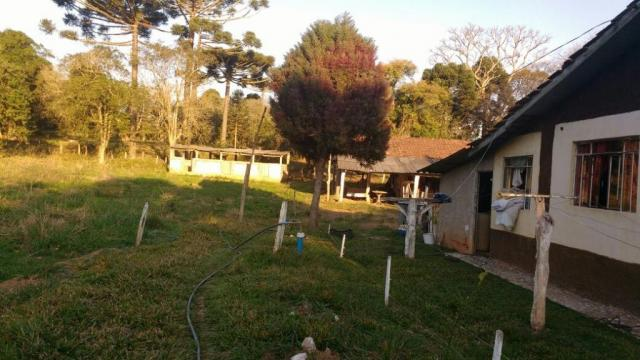 Sítio rural à venda, zona rural, quitandinha. - Foto 5