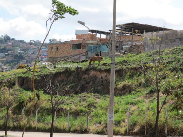 Terreno à venda em Jardim alvorada, Belo horizonte cod:647864 - Foto 11