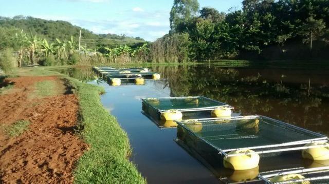 Tanque rede - piscicultura - usado - Foto 2