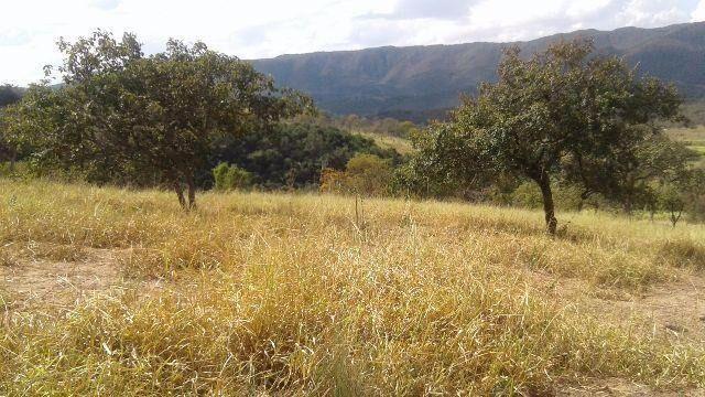 Fazenda 63 ha onça de pitangui - Foto 10