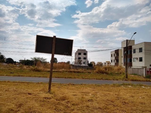 Terreno à venda em Vila rosa, Goiânia cod:302 - Foto 7