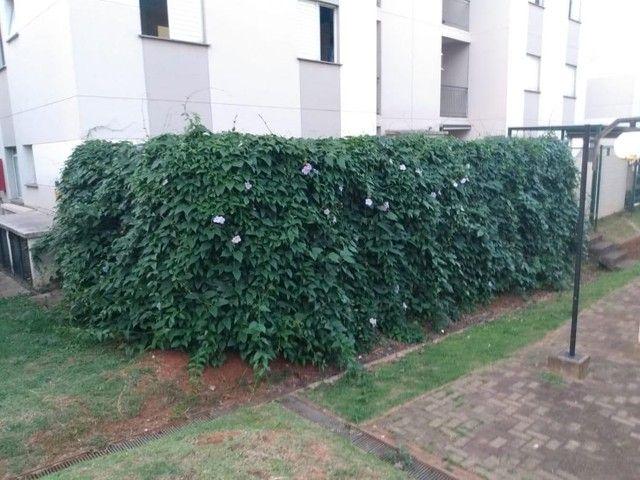 Apartamento de 2 quartos para venda - jardim bom retiro (nova veneza) - Sumaré - Foto 20