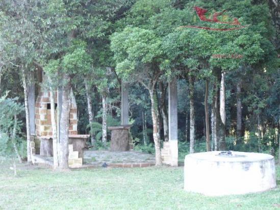 Chácara rural à venda, campo largo da roseira, são josé dos pinhais - ch0026. - Foto 10