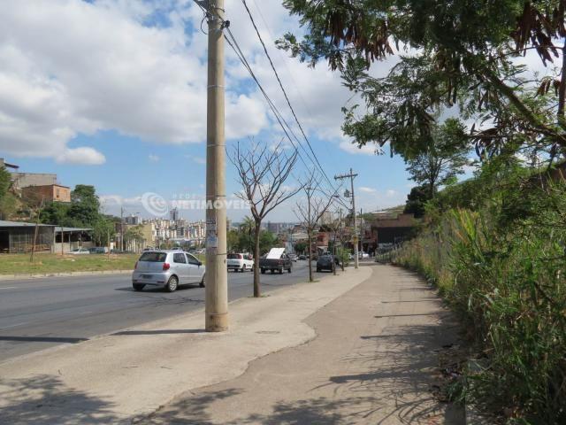 Terreno à venda em Jardim alvorada, Belo horizonte cod:647864 - Foto 6