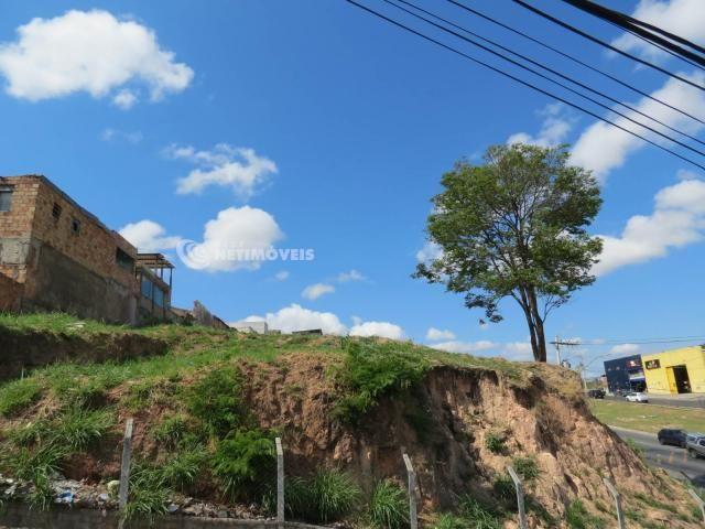 Terreno à venda em Jardim alvorada, Belo horizonte cod:647864 - Foto 4